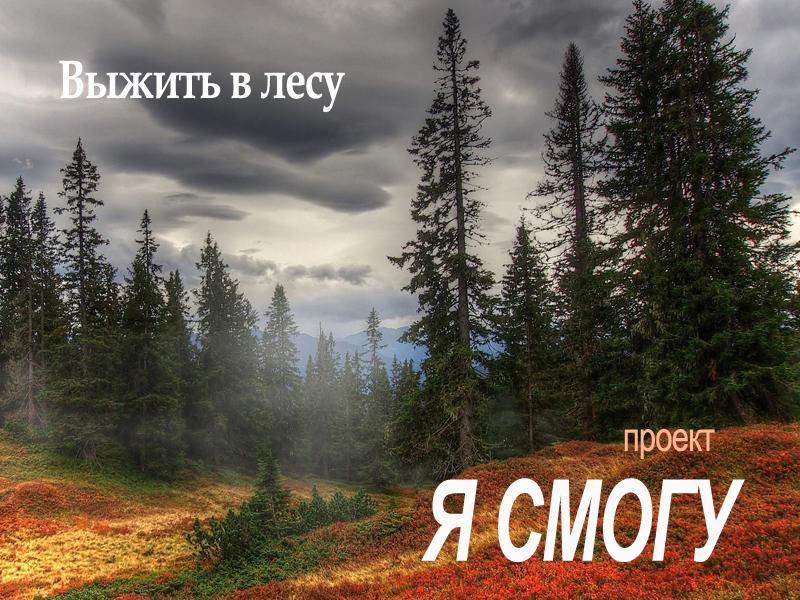 Экстрим проект «Я Живой — Выжить в лесу»