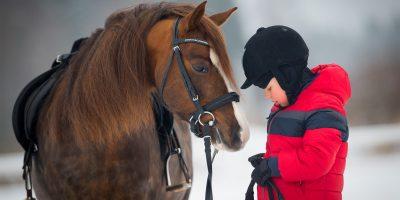 Скидка до 53% на конные прогулки и катание на пони от «Конного клуба в Ильино»